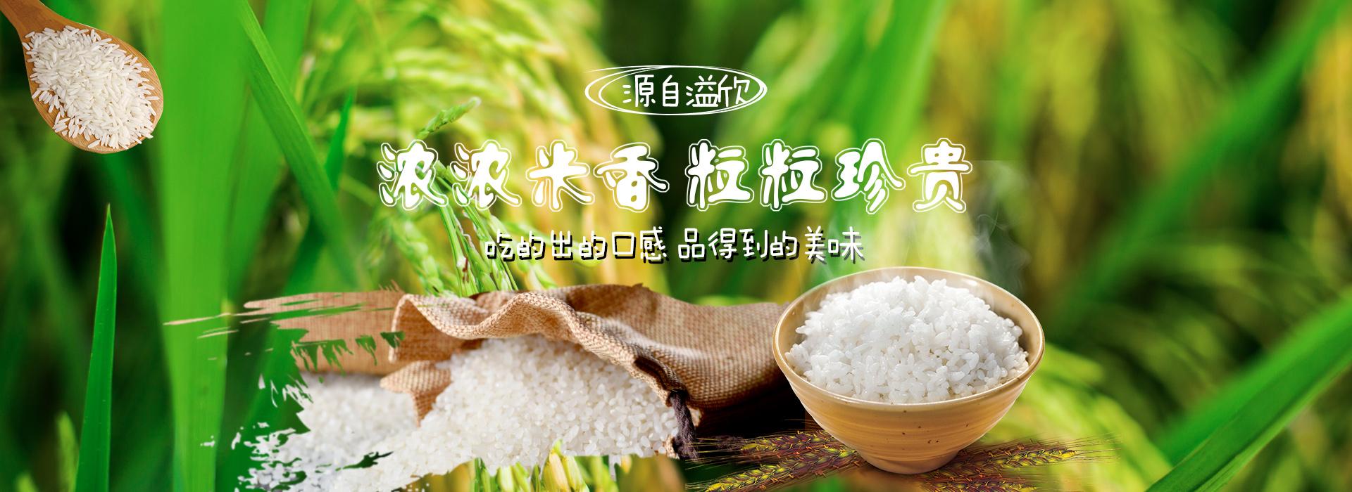 富硒锌大米厂家